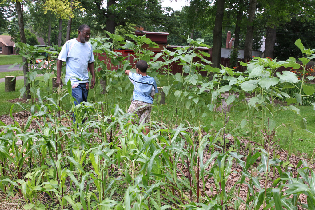 Abdul Malone, 62, and his son, Ahmad, 6, walk through the vegetable garden at Hope House in Deteroit's Brightmoor neighborhood June 30. Both volunteer with Voices for Earth Justice, an interfaith urban garden program in partnership with the Dominican sisters of Adrian, Michigan. (CNS photo/Dennis Sadowski) See DOMINICANS-GROW and RELIGIOUS-ENVIRONMENT July 8, 2015.