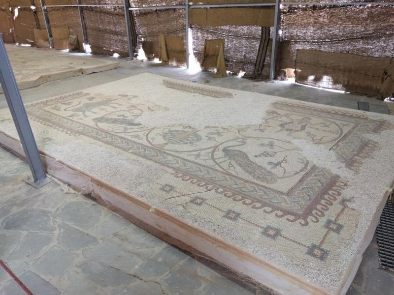 Restored mosaics are seen on display in front of the Memorial of Moses on the top of Mount Nebo in Jordan Oct. 10. The memorial has reopened its doors to the public amid festivities after a nearly decade of restoration. (CNS photo/Greg Tarczynski) See MOUNT-NEBO-MOSES-MEMORIAL Oct. 17, 2016.